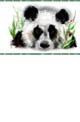 Click here to download Panda